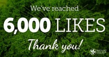 We've reached 6,000 likes on Facebook